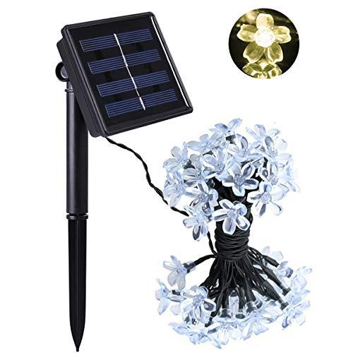 Jinxuny Solar String lights, 50 LED 7M Peach Ledertek Flower Lampada solare Power LED String Fairy Lights Solar Ghirlande Garden Decorazioni di Natale Per Outdoor Garden Home Wedding Xmas Tree Capodan