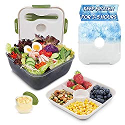 cheap Rassody 74oz Lunch Salad container, ice pack, dressing, 4 compartments …
