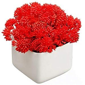 "Silk Flower Arrangements (Pack of 6) New 5"" Sedum Succulent Artificial Plant w/Terra Cotta Pot -Red"