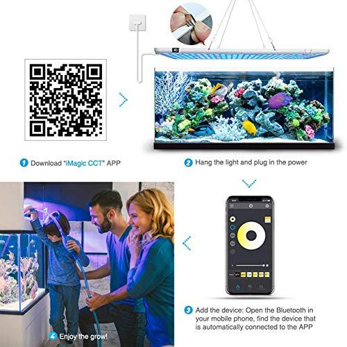 LED Aquarium Light Full Spectrum Dimmbare Beleuchtungslampe für Aquarium Süßwasser & Salzwasser