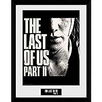 THE LAST OF US ザ・ラスト・オブ・アス - Face/インテリア額 【公式/オフィシャル】