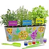 Dan&Darci Paint & Plant Pizza Herb Growing Kit - Grow Basil, Oregano, Arugula...
