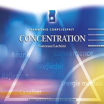 Musique d'immersion : Concentration (Harmonie corps/esprit)