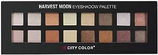 City Color Eyeshadow, Multi Color, 16 Color