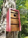 Modern Geometric Birdhouse - Cherry Fizz with Jacobean Cedar Face