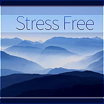 Stress Free - Calm Down and Relax, Home Spa, Stress Relief, Serenity, Wellness, Bathing Background Music