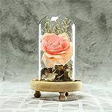 DKFS Nouveau Cristal Immortel Romantique Coeur Fleur Micro Paysage Rose Simulation Verre Abat-Jour Poudre
