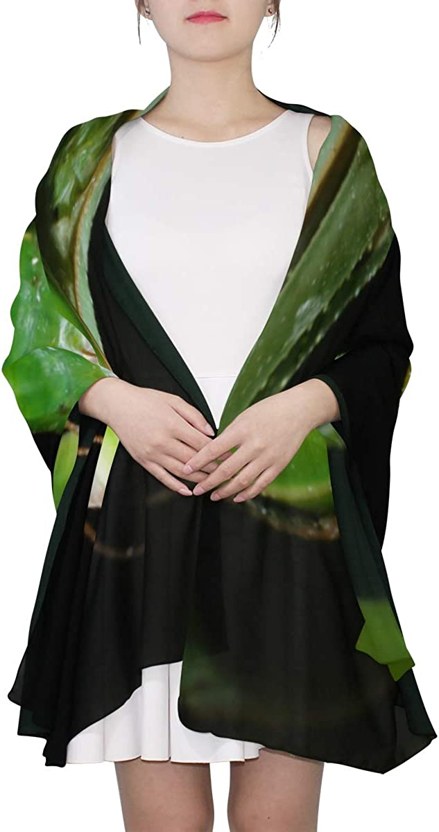 Green Ferocious Mantis Unique Fashion Scarf For Women Lightweight Fashion Fall Winter Print Scarves Shawl Wraps Gifts For Early Spring