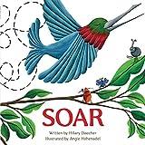 SOAR (English Edition)