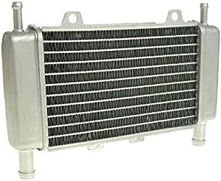 Radiatore ad acqua radiatore per Yamaha Aerox MBK Nitro SA14 YQ 50