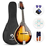 Vangoa Acoustic/Electric Mandolin