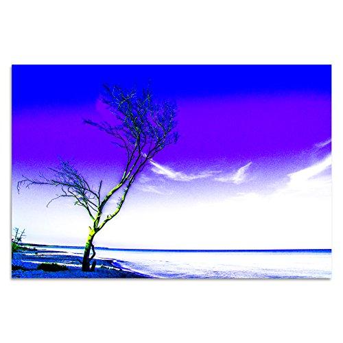 Cuadros Lifestyle Acrylglasbild | Wandbild Glasbild Acrylbild Rahmenlos | Torsten Reuter | Einsamer Baum, Größe:90x60 cm