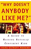 Image of Why Doesn't Anybody Like Me?: A Guide To Raising Socially Confident Kids