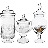 Top 15 Best Century Novelty Glass Jars