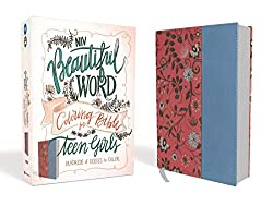7 Awesome Bibles for Preteens 10