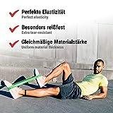 Zoom IMG-2 via fortis elastici fitness set