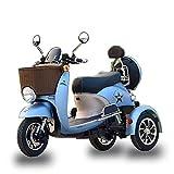 Lyanh Adulto Triciclo eléctrico Ocio al Aire Libre Ancianos discapacitados...