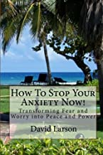 How To Stop Your Anxiety Now: Transforming Fear and Worry into Peace and Power by David Larson (2010-11-12)