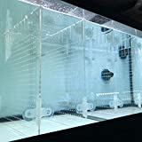 RA AquaTech Kit de separador de acuario acrílico con ventosas, 10 / 20 L / 20 H /29 / 40 B pecera (10 gal)