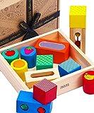 Jaques di Londra Scoperta Blocchi di Legno - Giocattolo di apprendimento Ideale , Montessori Giocattolo educativo e Gioco sensoriale per Bambini - Puzzle di Legno di Alta qualità dal 1795