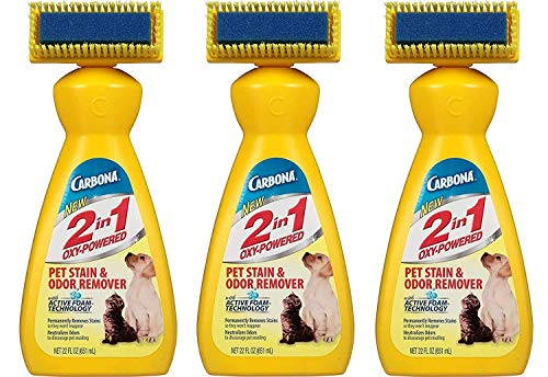 Carbona 2 in 1 Pet Stain and Odor Remover-22oz