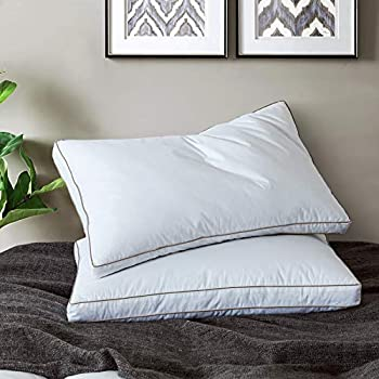 2-Count Yalamila White Bed Pillows