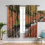 Colección de decoración de casa de granja cortina de cocina fluyendo en colorido otoño bosque hojas Gorbea Parque Natural España imagen Uso diario Perú Salmón W52 x L63 pulgadas