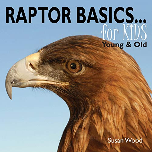 Raptor Basics for Kids