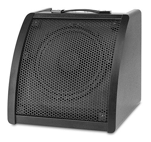 Classic Cantabile -  AP-30 Aktiv-Monitor