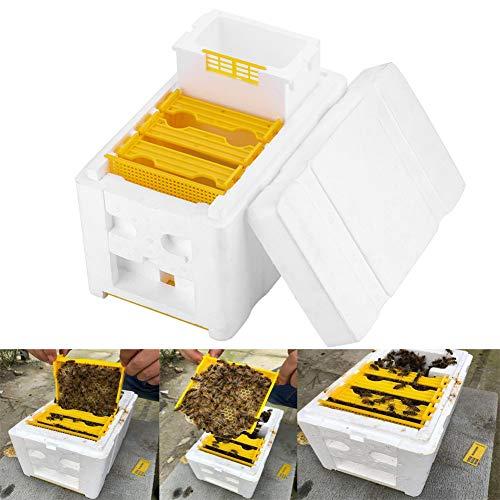 OPSLEA Harvest Bee Hive, Bestäubungsbox Imkerei Werkzeug Honigbienen Pollination Befruchtung Box