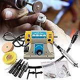 TOPQSC Máquina pulidora TM-2 220V 350W Amoladora eléctrica Máquina pulidora para joyería Torno dental Motor para pulir, Pulidora de Joyas Esmeriladora de Banco Herramienta de grabado de bricolaje