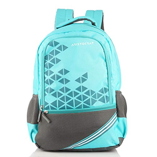 Aristocrat Pro 2 35 Ltrs Sky Blue Casual Backpack (BPPRO2HSBL)