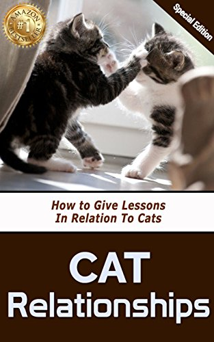Cat Relationships: How to Give Lessons in Relation to Cats...
