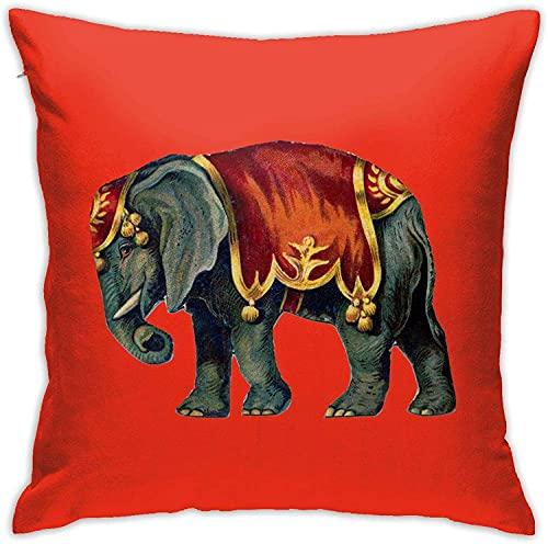 BONRI Throw Pillow Case, Lion Pillow Cover, Funda de Almohada Decorativa Cojín Cuadrado para sofá Sofá Coche 18x18-India Elephant