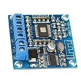 Oumefar Placa de Amplificador estéreo de 50 W + 50 W, Placa de Amplificador de Audio Bluetooth de 2 Canales, CC 12-24 V para Equipo Amplificador, componente de Audio