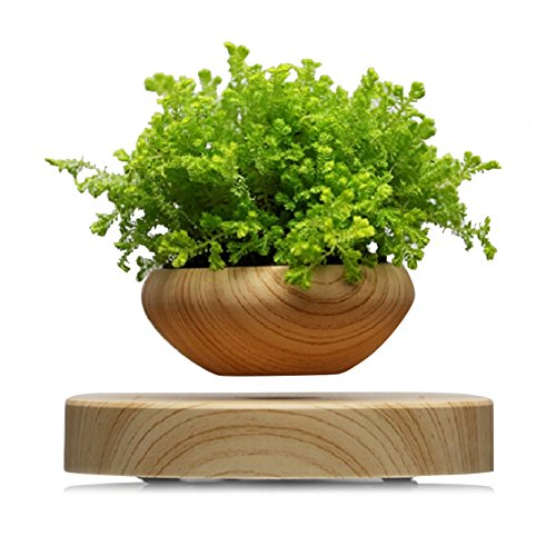 TSY Levitating Air Bonsai Pot Magnetic Levitation Suspension Flower Authentic Floating Levitating Plant Pot for Air Plants