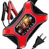 RIKIN Cargador de Batería Coche 6V/12V 12A Múltiples Modos de Carga Rápida con Pantalla LCD para Motos Automóviles Barco