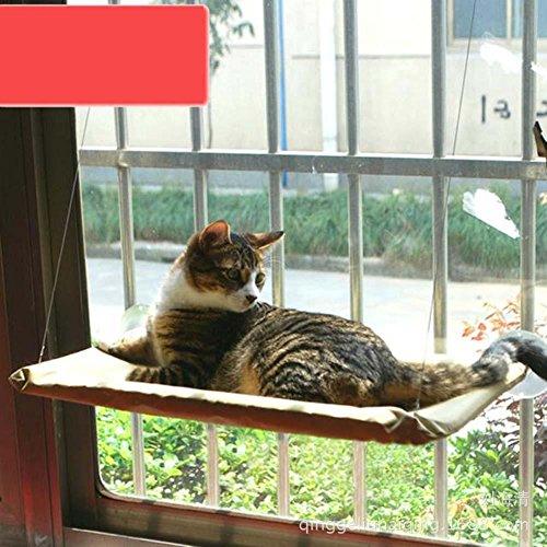 Hamac perché pour chat / chaton