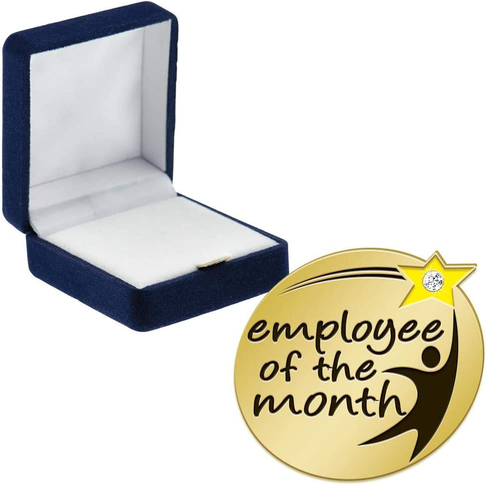 Crown Some reservation Awards Employee 1 year warranty of The Month Pins Th Gem with