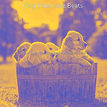 Piano Solo - Music for Keeping Dogs Relaxed