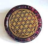 ZZYBIA LARGE 4' Garnet Crystals Flower Of Life Coaster Water Charging Plate Energy Dome