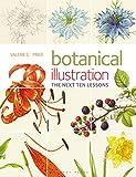 Botanical Illustration The Next Ten Lessons: Colour and Composition