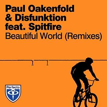 Beautiful World (Remixes)
