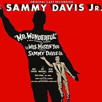 Mr. Wonderful (Original Cast Recording)