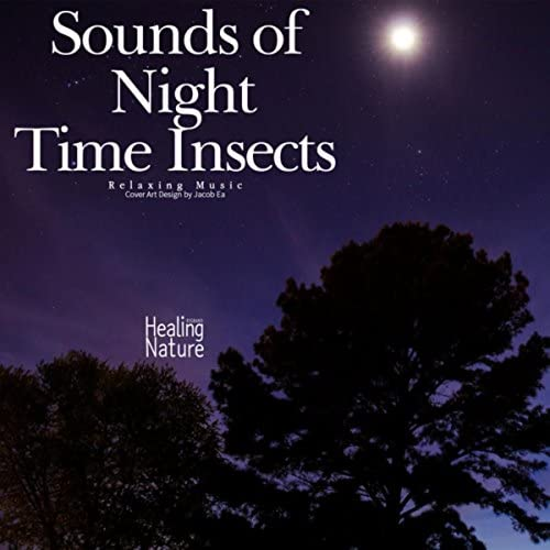 Nature Sound Band