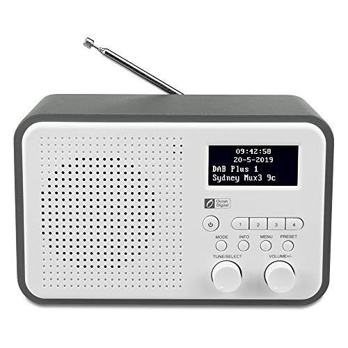Ocean Digital DB332 Radio DAB/DAB+ / Digitale FM con Altoparlante, Aux In, Uscita Audio, Jack per Cuffie, fino a 40 Stazioni Preimpostate, Cassa in Legno (Grigio + Bianco)