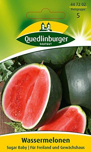 Wassermelone, Sugar Baby