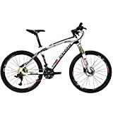 BEIOU Carbon Fiber Mountain Bike Hardtail MTB LTWOO 30 Speed 13kg 26' Professional External Cable Routing Toray T700 CB083