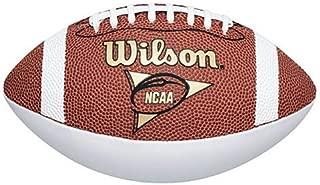 Wilson NCAA Mini Autograph Football