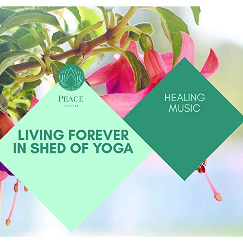 Living Forever In Shed Of Yoga - Healing Music